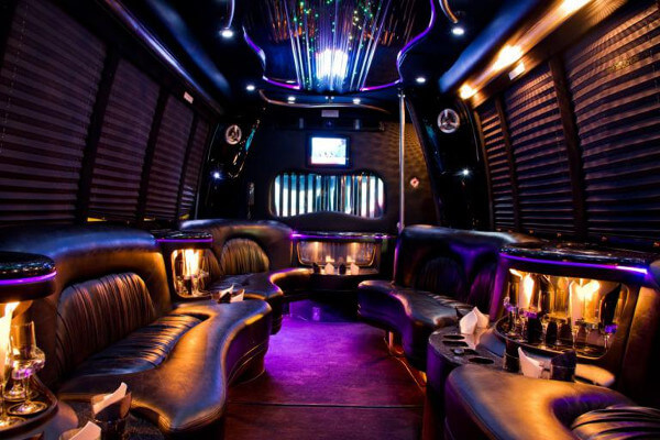15 Person Party Bus Rental Naples